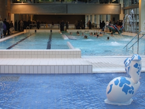 Pin horaires piscine on pinterest for Caluire piscine municipale